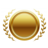 HYCAN_medals_gold